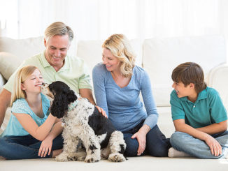 Before Death Do Us Part: Everything You Need to Know About Selling Your Life Insurance Policy