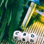 Why Athletes and Sick People should Consider Taking CBD